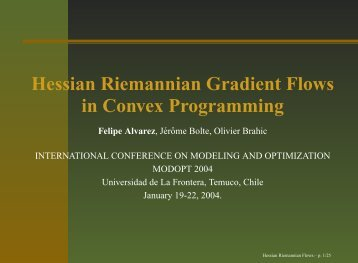 Hessian Riemannian Gradient Flows in Convex Programming - DIM