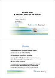 26.05.2009 Measles Virus