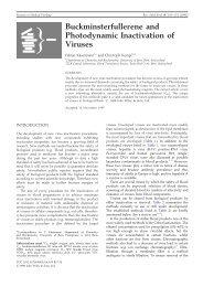 Buckminsterfullerene and Photodynamic Inactivation of Viruses