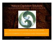 Sustainability Helix - Natural Capitalism Solutions