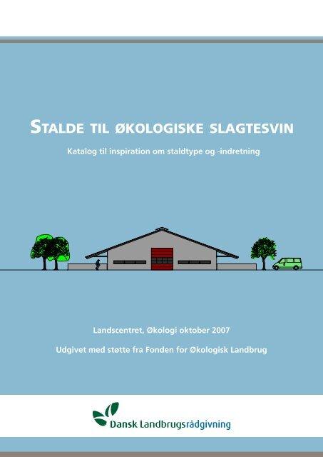 STALDE TIL øKOLOGISKE SLAGTESVIN - LandbrugsInfo
