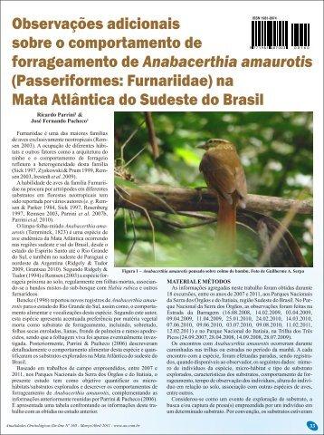 Passeriformes: Furnariidae - Atualidades Ornitológicas