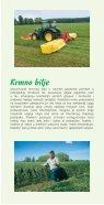 Ukrasne trave i krmno bilje - Page 7