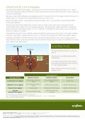 Technical Update Pdf - Syngenta - Page 2