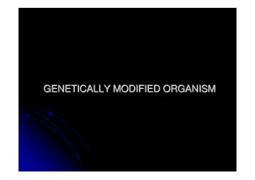 genetically modified organism (GMO)
