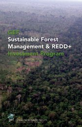 GEF Sustainable Forest Management & REDD+ ... - UN CC:Learn
