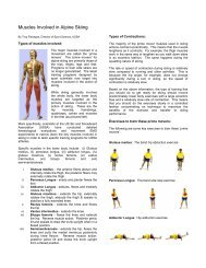 Muscles Involved in Alpine Skiing - USSA