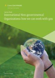 International Non Governmental Organisations brochure