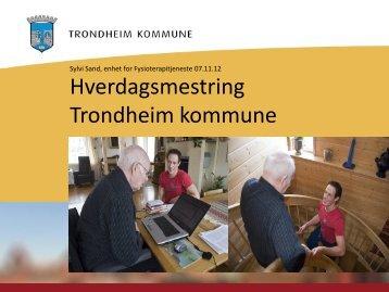 Trondheim kommune – Pågående prosjekter: