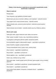 Otázky k závěrečné zkoušce z anatomie pro studující ergoterapie a ...