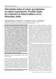 Microbially induced calcite precipitation in culture experiments ... - IISc