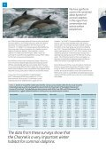 Cetaceans and Pelagic Trawl Fisheries in the Western Approaches ... - Page 4
