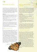 Gesegnete Vielfalt / gods rich variety - Umweltbüro der ... - Seite 4