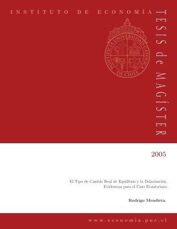 PREGUNTAS Y ESTRATEGIAS - Instituto de Economía - Pontificia ...