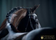 World Dressage Masters Guide 2014