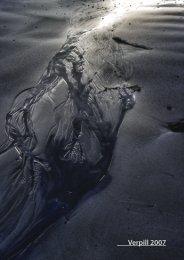 Verpill 2007 - Raunvísindastofnun Háskólans - Háskóli Íslands