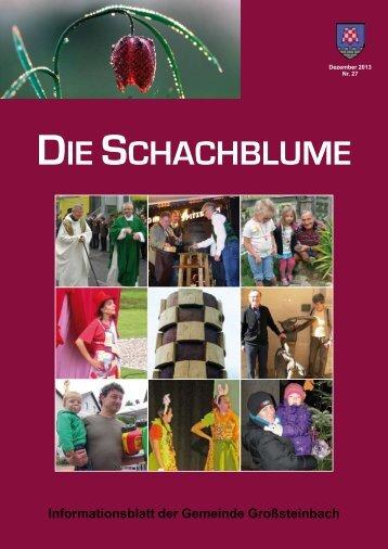 zeitung_grosteinbach.. - Großsteinbach