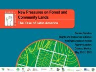 The Case of Latin America - Rights and Resources Initiative