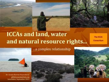"water as an invaluable natural resource Workshop provided an invaluable opportunity to develop and refine the ideas in ""natural resources and conflict: natural resources such as land, water."