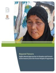 Beyond Tenure - Rights and Resources Initiative