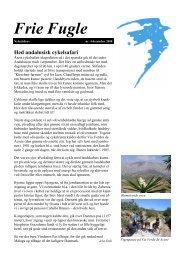 Hed andalusisk cykelsafari - Idéværkstedet De Frie Fugle