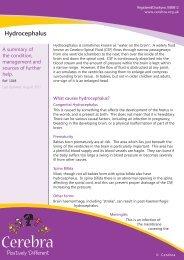 Hydrocephalus Factsheet - Cerebra