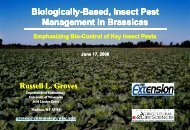 Biologically-based insect pest management in brassicas