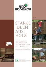 STARKE IDEEN AUS HOLZ - Ferdi Hombach