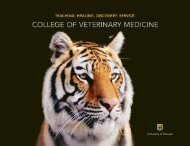 University of Missouri - College of Veterinary Medicine