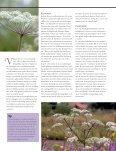 Tuinen - Landleven - Page 2