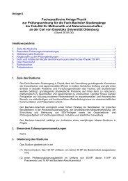Fachspezifische Anlage zur PO Fach-Bachelor ... - Institut für Physik