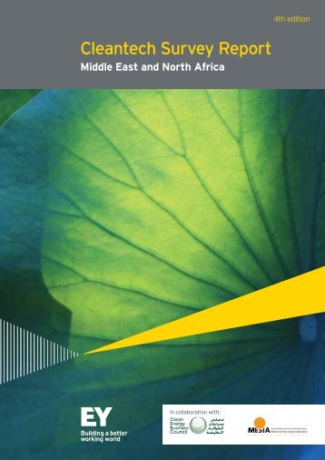 EY-middle-east-and-north-africa-cleantech-survey