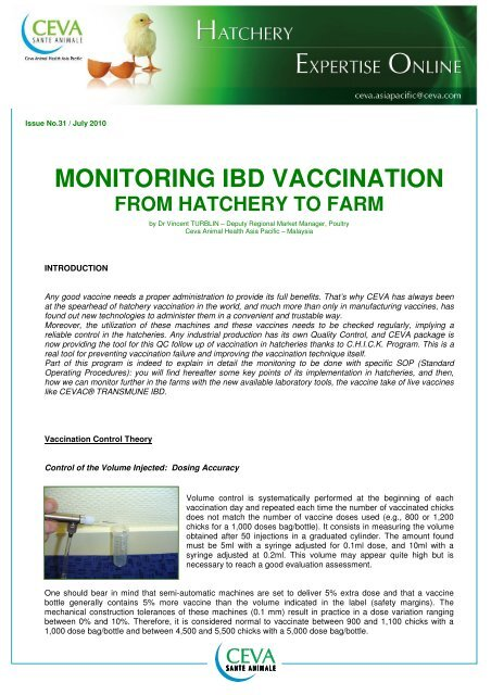 July - Monitoring IBD Vaccination From Hatchery - The Poultry Site
