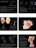Anatomie im KH - Ein Blick in eine chirurgische Endoskopie-Praxis - Seite 4