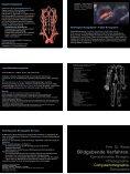 Anatomie im KH - Ein Blick in eine chirurgische Endoskopie-Praxis - Seite 5