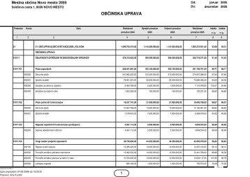 Občinska uprava (.pdf 40 KB) - Mestna občina Novo mesto