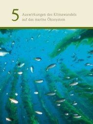 Herunterladen PDF > Kapitel 5 - World Ocean Review