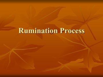 Rumination Process