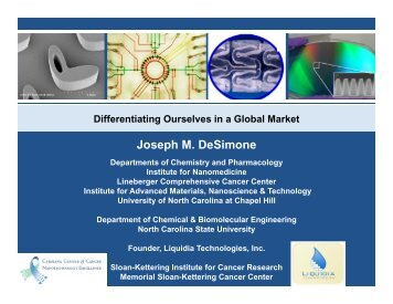 Differentiating Ourselves in a Global Market - Polymer Science and ...