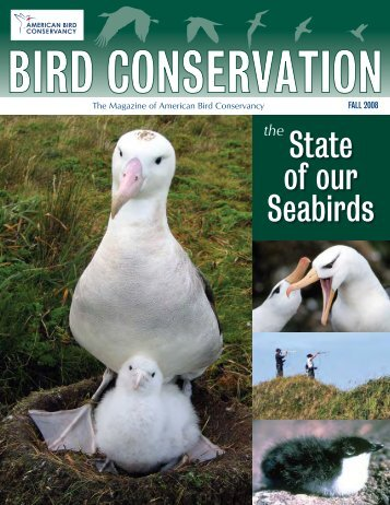 Fall 2008: The State of our Seabirds - American Bird Conservancy