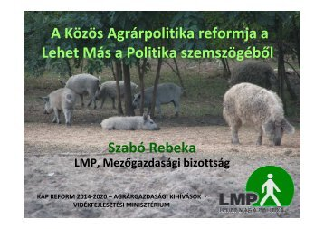Szabó Rebeka LMP előadása [Kompatibilitási mód]
