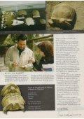 Parques e Vida Selvagem - aMasquefa - Page 3
