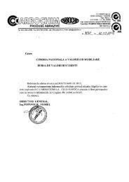 Raport curent - Ziua de Cluj