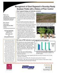 Management of Giant Ragweed in Roundup Ready Soybean Fields ...