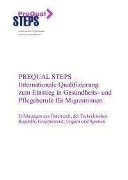 PREQUAL STEPS Internationale Qualifizierung zum Einstieg ... - Maiz