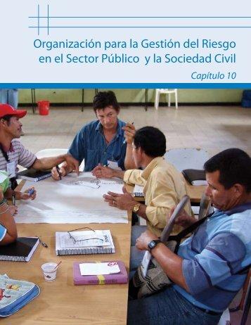 Organización para la Gestión del Riesgo en el Sector Público y la ...