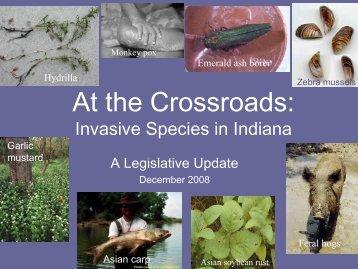 Invasive Species in Indiana