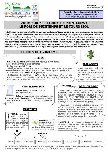 Fiche itk pois proteagineux opaba for Chambre d agriculture 34