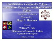 Hugh S. Hammer - American Association of Community Colleges
