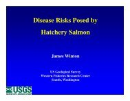 Disease Risks Posed by Hatchery Salmon - State of the Salmon